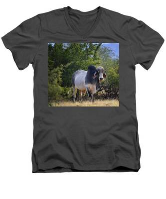 Brahma Cow Men's V-Neck T-Shirt
