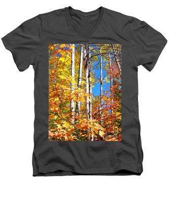 Gold Autumn Men's V-Neck T-Shirt