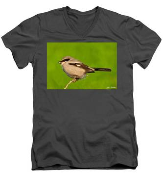 Loggerhead Shrike Men's V-Neck T-Shirt