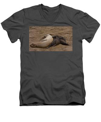 Seal And Pups Men's V-Neck T-Shirt
