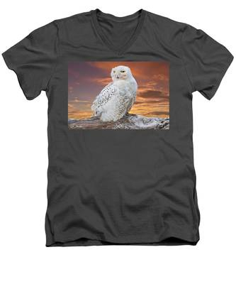Snowy Owl Perched At Sunset Men's V-Neck T-Shirt