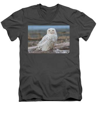 Snowy Owl Watching From A Driftwood Perch Men's V-Neck T-Shirt