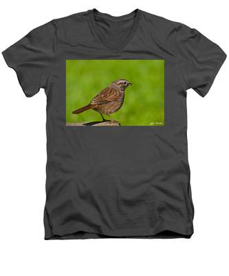 Song Sparrow On A Log Men's V-Neck T-Shirt