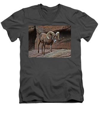 Desert Bighorn Sheep Ram I Men's V-Neck T-Shirt