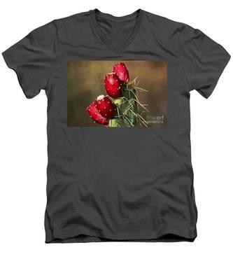 Prickley Pear Fruit Men's V-Neck T-Shirt