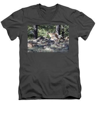 Pronghorn Antelope Fawn Men's V-Neck T-Shirt
