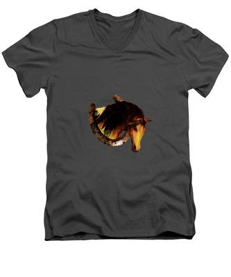 Choctaw Ridge Men's V-Neck T-Shirt