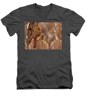 Female Cardinal On The Fence Men's V-Neck T-Shirt
