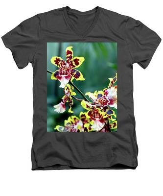 Striped Maroon And Yellow Orchid Men's V-Neck T-Shirt