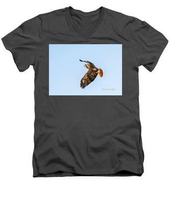 Red-tail Hawk In Flight Men's V-Neck T-Shirt