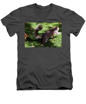 Squirrel Running Men's V-Neck T-Shirt