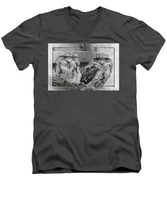 Tawney Frogmouths Men's V-Neck T-Shirt