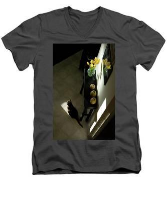 The Reception Hall Men's V-Neck T-Shirt