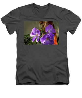 Three Sisters Men's V-Neck T-Shirt
