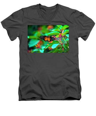 Tiger Longwing Butterfly Men's V-Neck T-Shirt