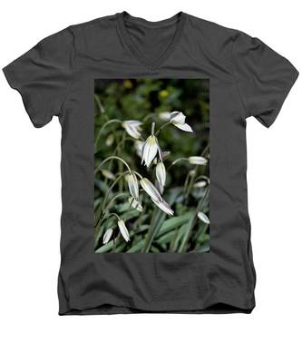 Tulipa Turkestanica Men's V-Neck T-Shirt