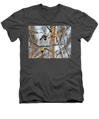 Yellow-shafted Northern Flicker Staying Warm Men's V-Neck T-Shirt
