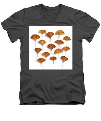 Gingkos Fall Men's V-Neck T-Shirt