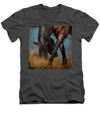 Angles Of The Horse Men's V-Neck T-Shirt