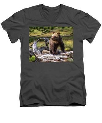 Better View From Here Men's V-Neck T-Shirt