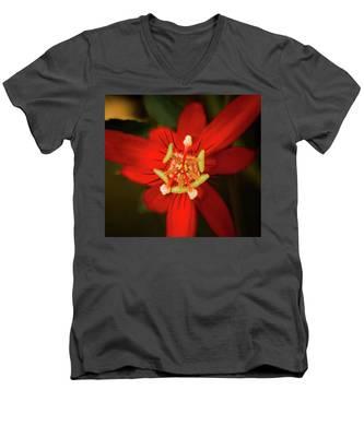 Crimson Beauty Men's V-Neck T-Shirt