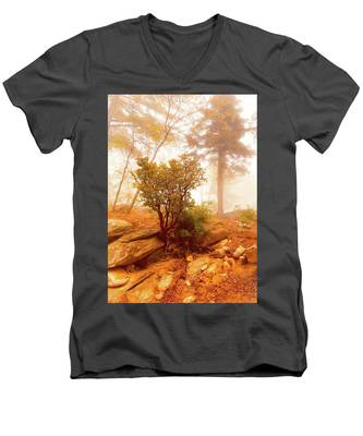 Manzanita In Light Men's V-Neck T-Shirt