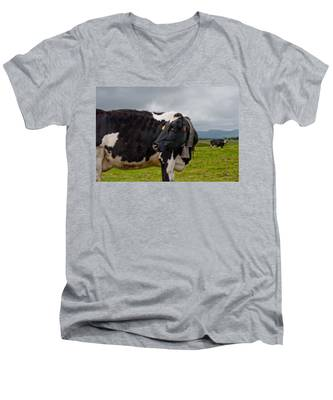 Men's V-Neck T-Shirt featuring the photograph Cow Wearing Cowbell  by Joseph Amaral