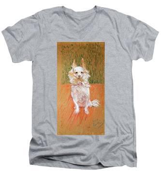 Follette Men's V-Neck T-Shirt