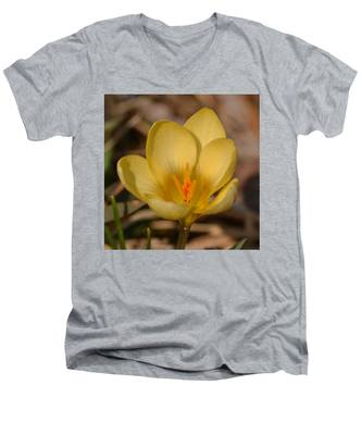 Yellow Crocus Men's V-Neck T-Shirt