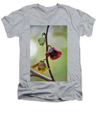 Paw-paw Flowers Men's V-Neck T-Shirt