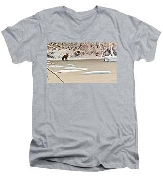 Winter Fox Men's V-Neck T-Shirt