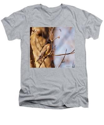Cedar Waxwing In Autumn Men's V-Neck T-Shirt