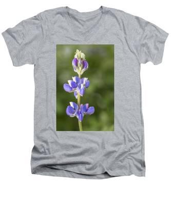 Little Lupine Men's V-Neck T-Shirt
