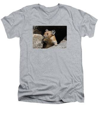 Pika Looking Out From Its Burrow Men's V-Neck T-Shirt