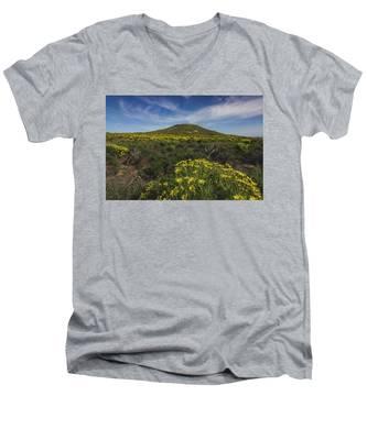 Spring Wildflowers Blooming In Malibu Men's V-Neck T-Shirt