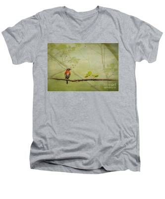 Until Spring Men's V-Neck T-Shirt
