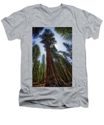 Giant Sequoia Tree Men's V-Neck T-Shirt