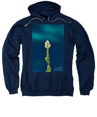 Faith Is Peace Sweatshirt