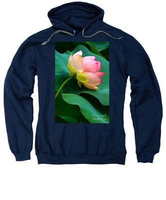 Lotus Blossom And Leaves Sweatshirt