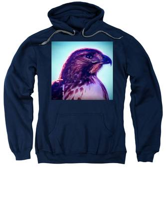 Sweatshirt featuring the photograph Ak-chin Red-tailed Hawk Portrait by Judy Kennedy