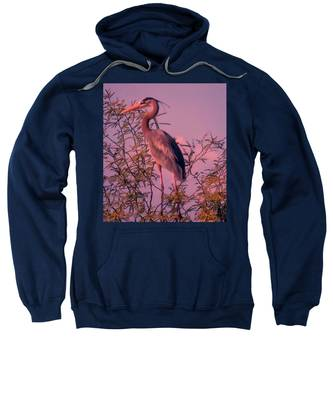 Sweatshirt featuring the photograph Great Blue Heron - Artistic 6 by Judy Kennedy