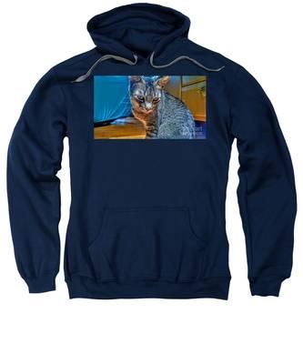 Le Chat Bleu Sweatshirt
