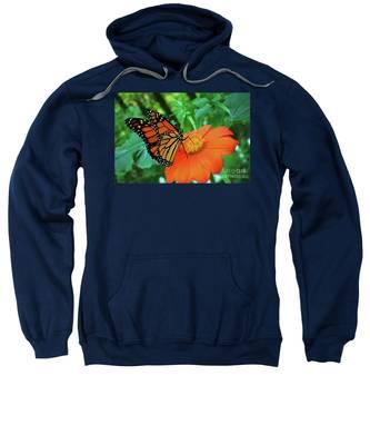 Monarch On Mexican Sunflower Sweatshirt