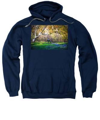 Solitude Under The Sycamore Sweatshirt