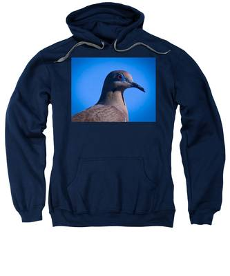Sweatshirt featuring the photograph Don't It Make My Brown Eyes Blue by Judy Kennedy
