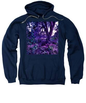 Sweatshirt featuring the photograph Dreamy Desert Wash  by Judy Kennedy