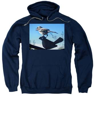 Sweatshirt featuring the photograph Caption This by Judy Kennedy
