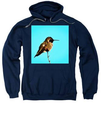 Sweatshirt featuring the photograph Perfect Posing by Judy Kennedy