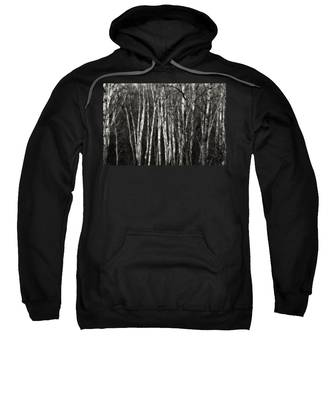 Birches Sweatshirt