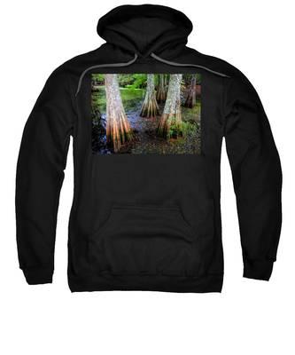 Cypress Waltz Sweatshirt